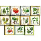 Беларусь 2004 флора плоды деревьев Стандарт Восьмой стандартный выпуск самоклеящейся бумаге серия **