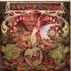 Spyro Gyra - Morning Dance - LP - 1979