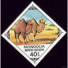 1 марка 1978 год Монголия Корабль пустыни