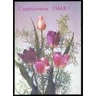 """""""1 Мая!"""" - открытка СССР, 1988 года, чистая"""