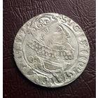 6 грошей 1626 Сигизмунд III