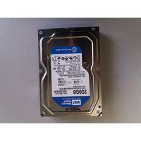Жесткий диск 250Gb WD WD2500AAJB SATA (908240)