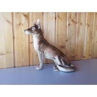 Собака фарфоровая, ГДР