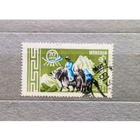 Монголия.1961г. Фауна.