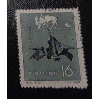 Ископаемые животные в Китае. Китай. Дата выпуска: 1958-04-15