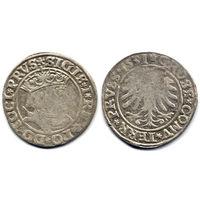 Грош 1531, Жигимонт Старый, Торунь. Окончания легенд - PRVS/PRVSS