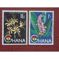 Гана. Флора
