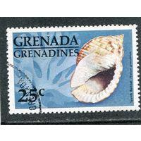 Гренада - Гренадины. Морская улитка Скотч-какот