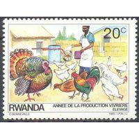 Руанда птицы дом