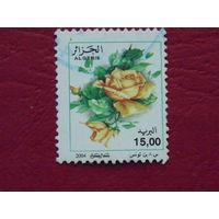 Алжир 2004г. Цветы.