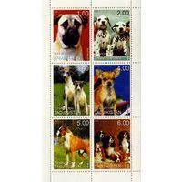 Таджикистан 1999г, собаки, 6м. сцепка