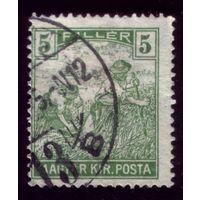 1 марка 1919 год Венгрия 244