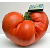 Набор из 22 сортов редких коллекционных томатов и перцев