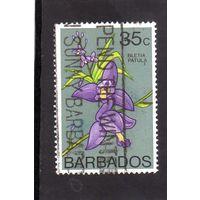 Барбадос. Ми-375. Цветы.Орхидеи.1976