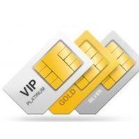 Пара золотых номеров и интернет домен