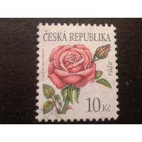 Чехия 2008 цветы