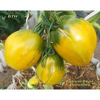 Семена томата Кенигсберг золотой