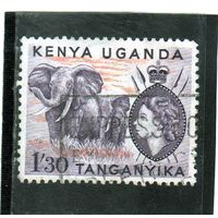 Кения, Уганда и Танганьика. Восточно африканское сообщество. Mi:EA 101. Королева Елизавета II и Африканский слон (Loxodonta africana). 1955.