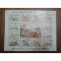 Таджикистан 1996 Птицы лист Mi-17,0 евро