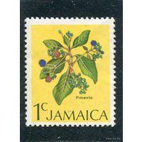 Ямайка. Кустарник - душистый перец.