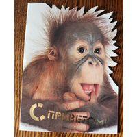С Приветом! Двойная, чистая. Серия Праздник Всегда с Вами! К году обезьяны. 1991-1992гг