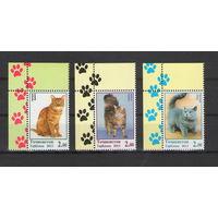 Таджикистан Кошки 2013 год чистая полная серия из 3-х марок