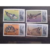 Берлин 1977 ископаемая фауна Михель-4,5 евро полная серия