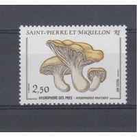 [1067] Сент- Пьер и Микелон 1987.Грибы.