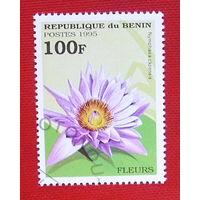 Бенин. Цветы. ( 1 марка ) 1995 года.
