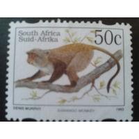 ЮАР 1995 обезьяна