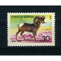 Таджикистан, 1992г. горный баран, 1м.