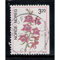 Марка Норвегия 1990 флора