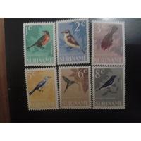 Суринам 1966 автономия Нидерландов Птицы