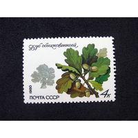 СССР 1980 Охраняемые породы деревьев и кустарников Дуб (А5)
