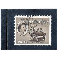 Маврикий. Mi:MU 254. Джаван Руса (Cervus timorensis) Серия: Королева Елизавета II и виды. 1953.