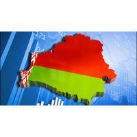 Особенности политической системы и политического режима в Республике Беларусь - политология - реферат