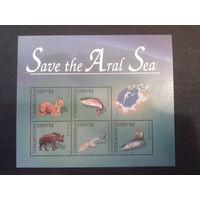 Туркменистан 1996 Спасите Аральское море, блок