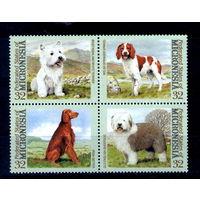 Собаки на марках Микронезии