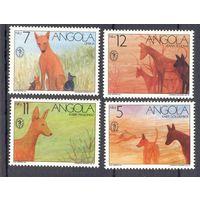 Ангола фауна