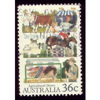 1 марка 1987 год Австралия 1023