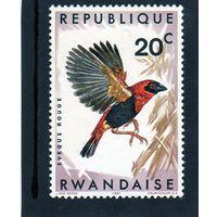 Руанда. Ми 249А. Птицы.1967.
