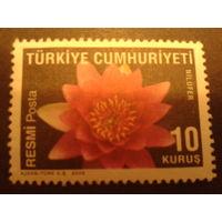 Турция 2009 цветы