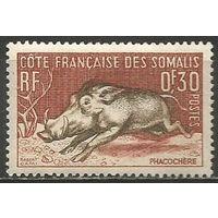 Сомали(французское). Бородавочник. 1958г. Mi#315.
