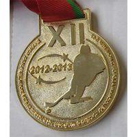 12-й чемпионат Минска по хоккею среди любительских команд 2012-2013 (1 и 3 место)