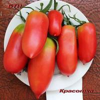 Семена томата Красотка