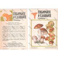 Буклет роскоопторгрекламы - собирайте и сдавайте грибы, 1984 г.