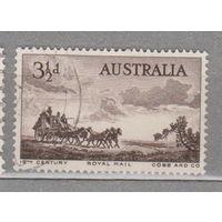 Лошади всадники фауна  повозки Австралия 1955 год лот 1024