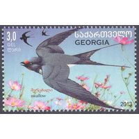 Грузия фауна птица ласточка