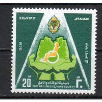 Благотворительная организация Египет 1976 год серия из 1 марки