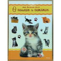 Моя большая книга о кошках и котятах (уценка)